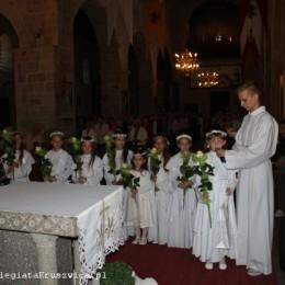Parafia Kościoła Rzymsko Katolickiego pw. śś. Piotra i Pawła w Kruszwicy - Rocznica święceń kapłańskich